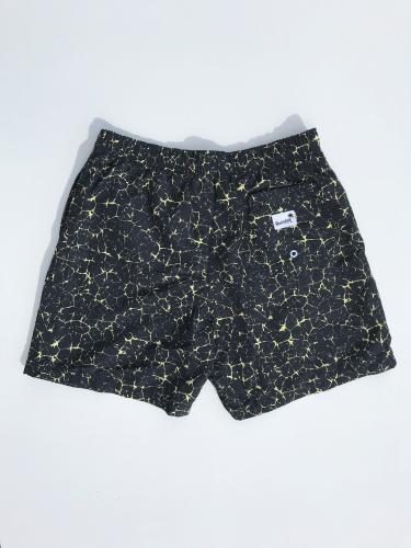Swim Shorts (Electric)